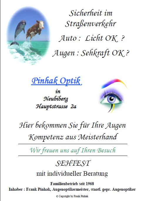 Pinhak Optik Flyer